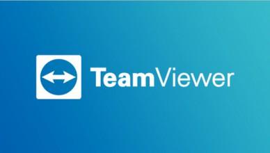TeamViewer Full v15.5.3 Портативная