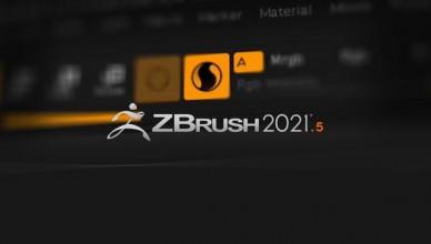 Pixologic ZBrush 2021.5