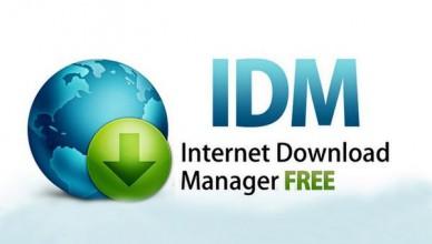 Internet Download Manager 6.38 (2021)