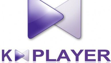 The KMPlayer 4.2.2.49 (2021)